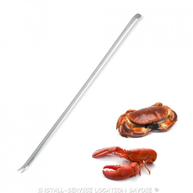 Curette à crustacés
